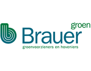 Brauer Groen Belfeld